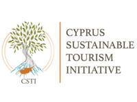 logo-csti2